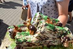 Diecezjalne uroczystości 300lecia koronacji Obrazu MB Częstochowskiej Topczewo 26.08.2017r (113)